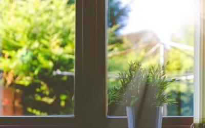 Pour des vitres propres !